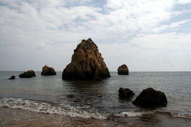 Zdjęcia: praia de rocha, algarve, skalłki, PORTUGALIA