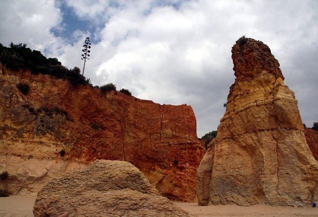Zdjęcia: praia de rocha, algarve, skała na plazy, PORTUGALIA
