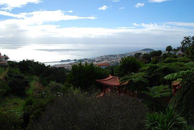 Zdjęcia: Monte, Madera, Panorama z Monte Botanic Garden, PORTUGALIA