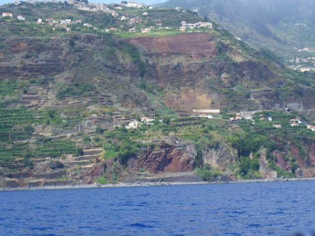 Zdjęcia: okolice Funchal, Madera, Południowy brzeg Madery, PORTUGALIA