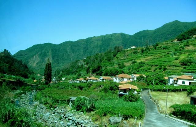Zdjęcia: okolice Sao Vicente, Madera, zieleń Madery, PORTUGALIA