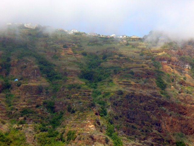 Zdjęcia: płd. wybrzeże, Madera, Niebieska paralotnia, PORTUGALIA