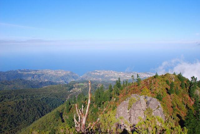 Zdj�cia: Pico Ruivo, Madera, W kierunku Santany, PORTUGALIA