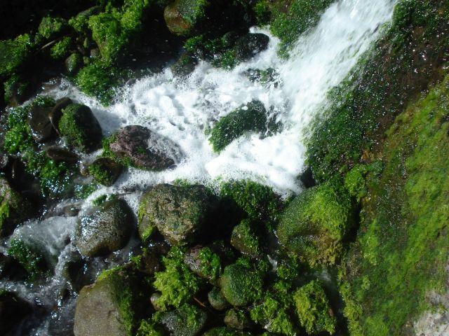 Zdjęcia: Madeira, Madeira10, PORTUGALIA