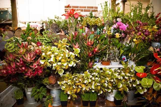 Zdjęcia: Funchal - rynek handlowy, Madera, Mercado - stoisko z kwiatami, PORTUGALIA