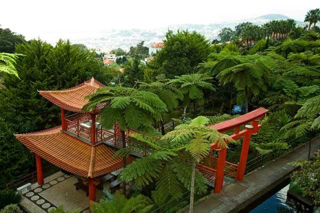 Zdjęcia: Funchal/Ogrody Monte, Madera, Monte, PORTUGALIA