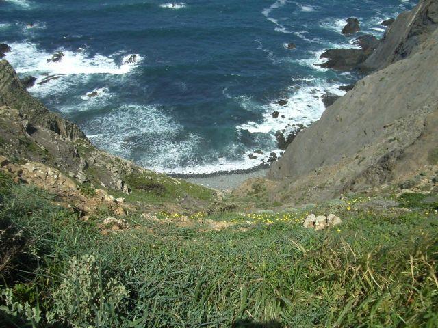 Zdjęcia: Zachodnie wybrzeże, Algarve, Portugalia, PORTUGALIA