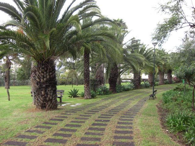 Zdjęcia: Madeira - Funchal, Park, PORTUGALIA