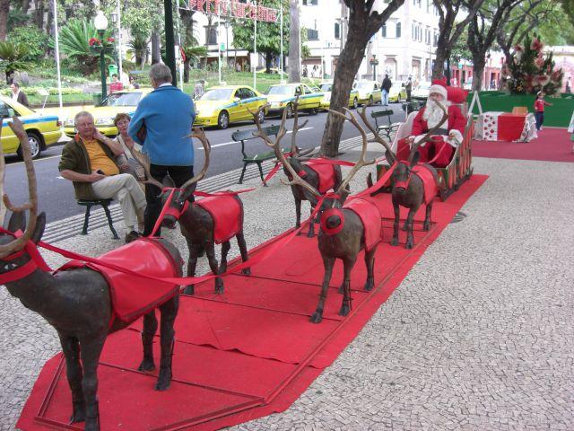 Zdjęcia: Madeira - Funchal, Święty Mikołaj i reniferki..., PORTUGALIA
