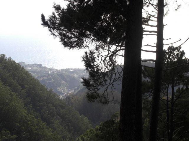 Zdjęcia: Madeira - Funchal, Góry 4, PORTUGALIA