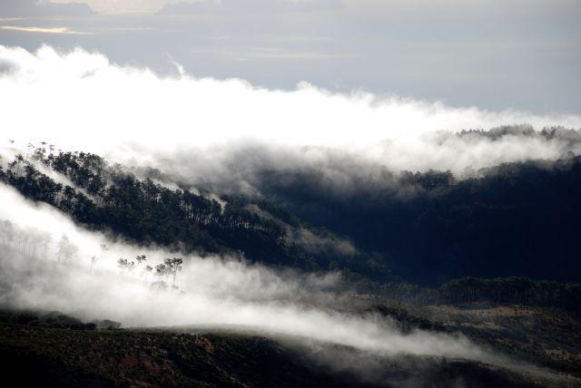 Zdjęcia: widok z grzbietu pomiędzy Pico do Cedro i Pico do Areeiro, Madera, mgły o poranku, PORTUGALIA