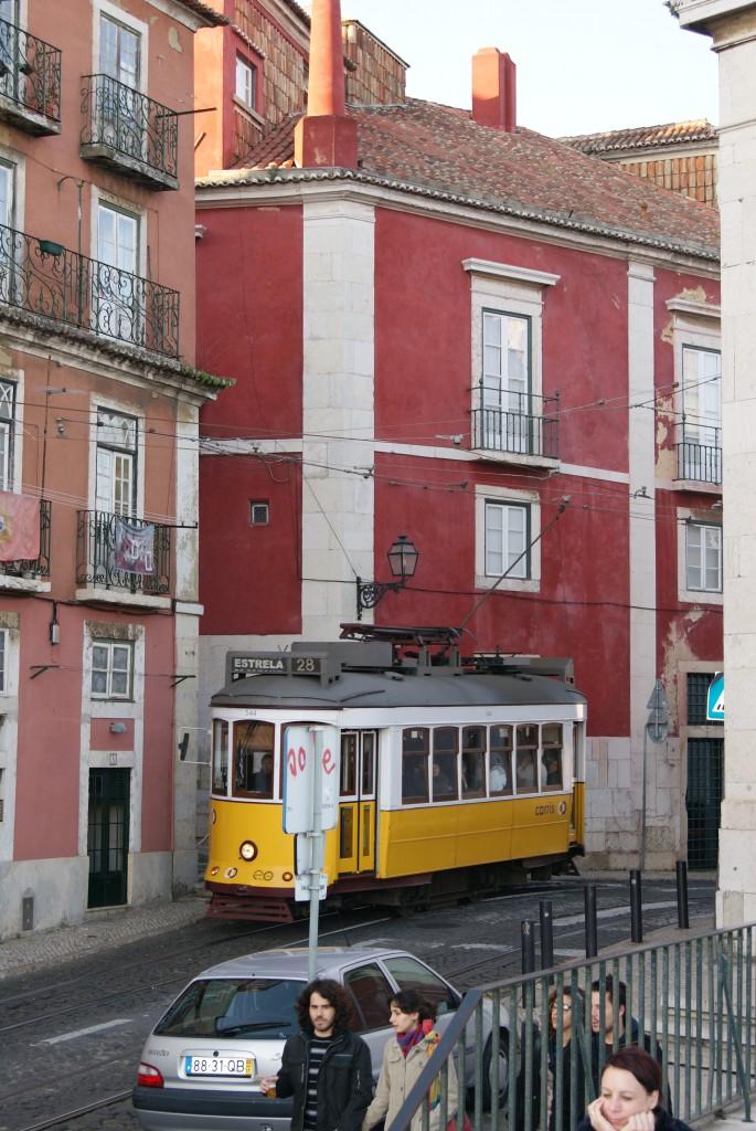 Zdjęcia: Lizbona, środkowa, zasmakuj portugalii, PORTUGALIA