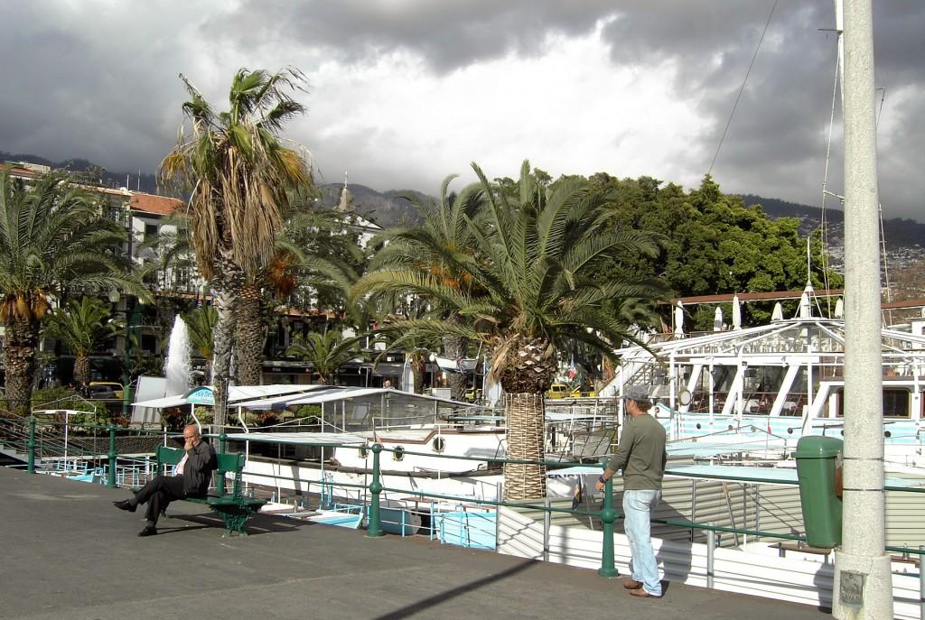 Zdjęcia: Funchal, Madera, Promenada w Funchal, PORTUGALIA