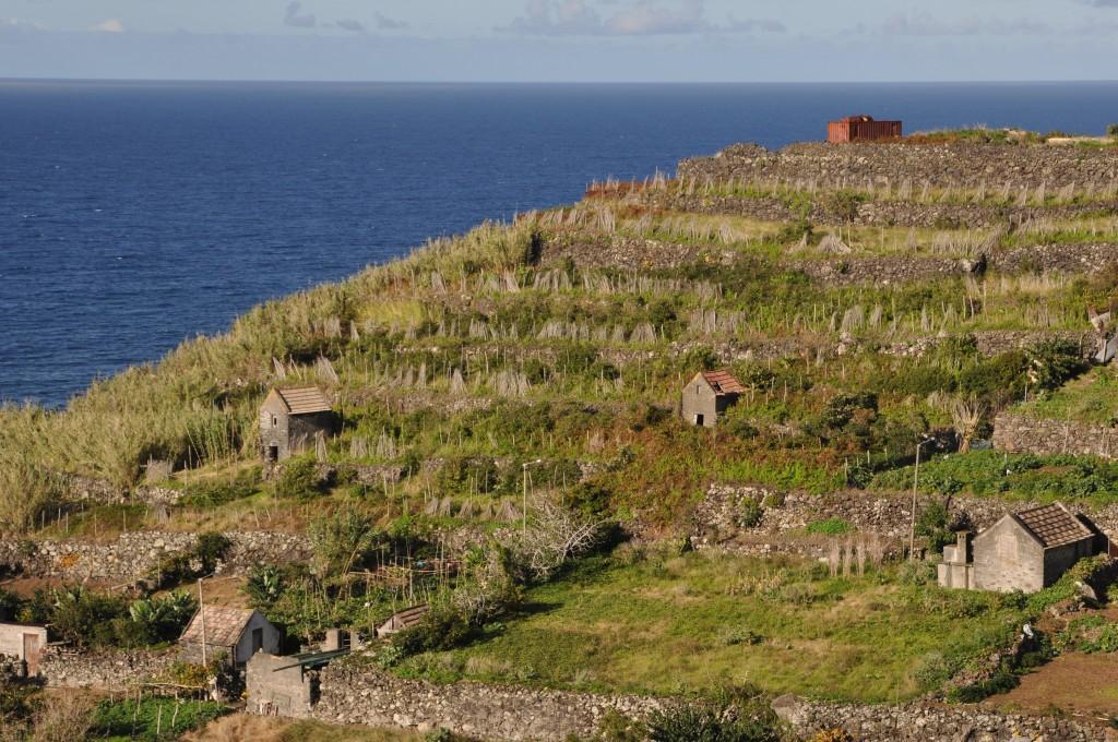 Zdjęcia: Północno-wschodnie wybrzeże, Madera, Wzgórze, PORTUGALIA