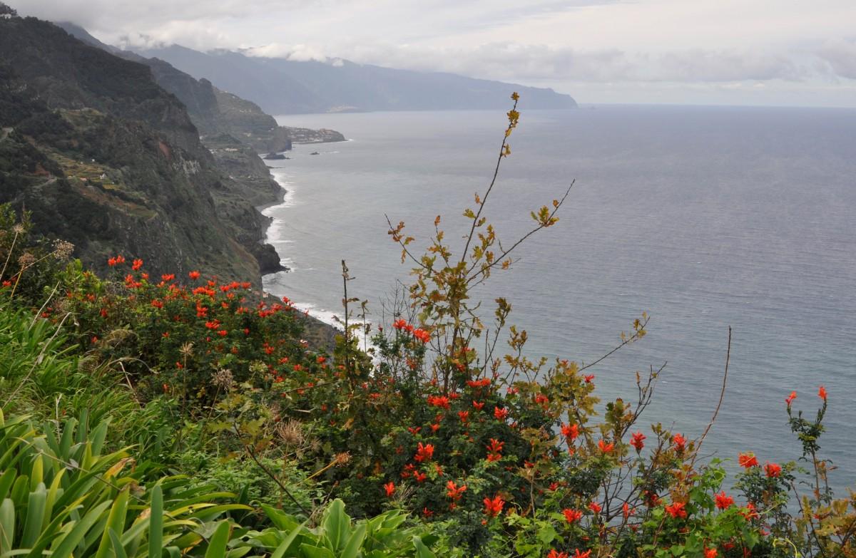 Zdjęcia: północno-wschodnie wybrzeże, Madera, Wybrzeże wyspy, PORTUGALIA
