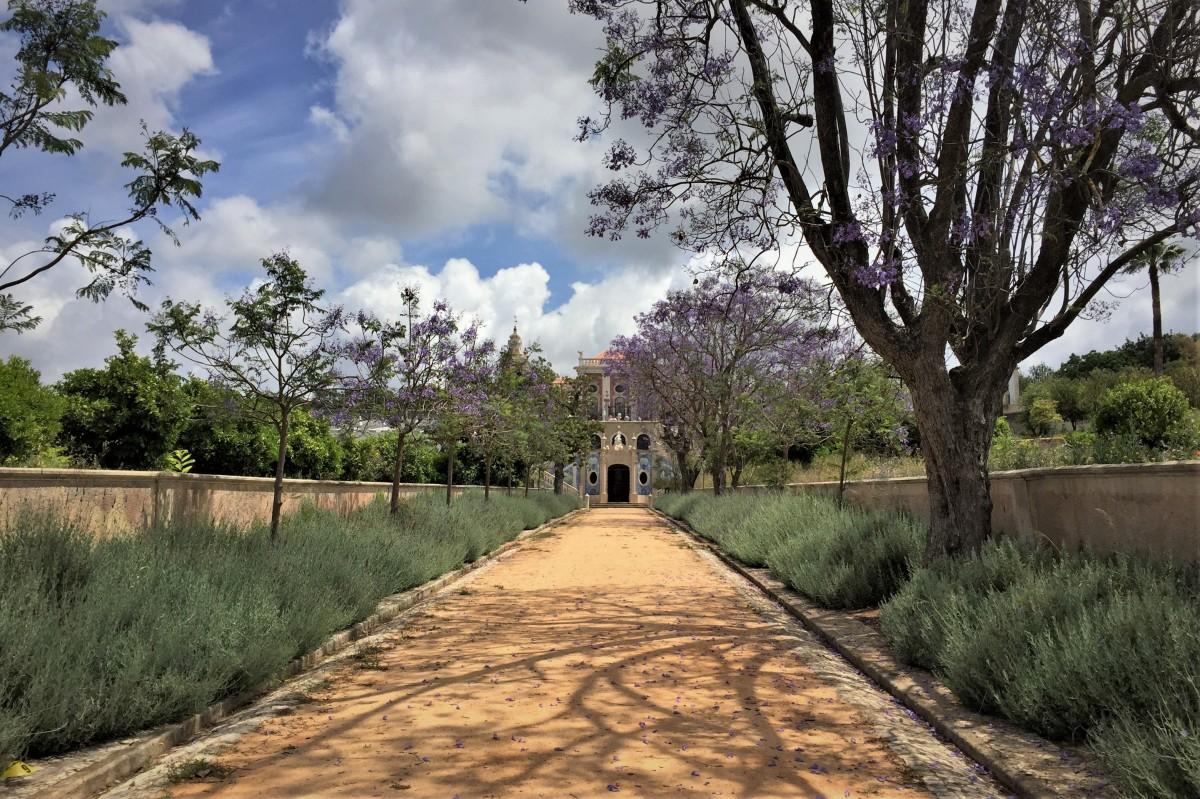 Zdjęcia: Estoi, Algarve, alejką..., PORTUGALIA
