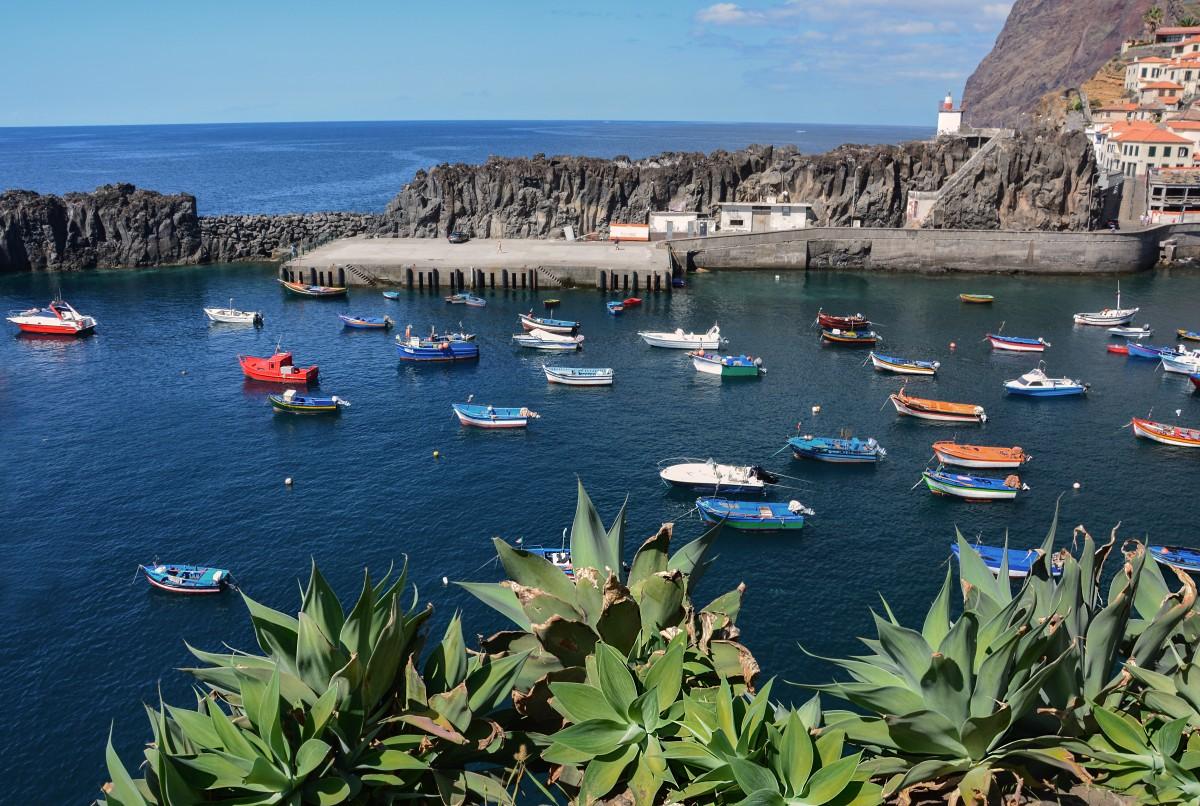 Zdjęcia: Camara de Lobos, Madera, Camara de Lobos, PORTUGALIA