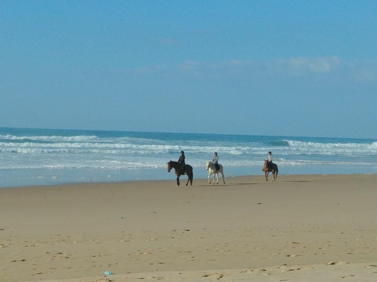Zdjęcia: Praia da Cordoama, Algarve, Portugalia poza sezonem, PORTUGALIA