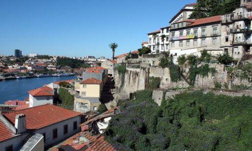 Zdjęcie PORTUGALIA / - / Porto / Zabudowa miasta