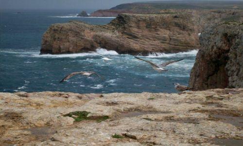 Zdjecie PORTUGALIA / - / Cabo de Sao Vicente / The paradise!