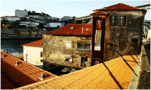 Zdjecie PORTUGALIA / Porto / Vila Nova de Gaia / Jesienne kolory lata