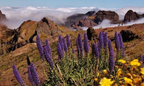 PORTUGALIA / Madera / Pico Do Arieiro / W górach...