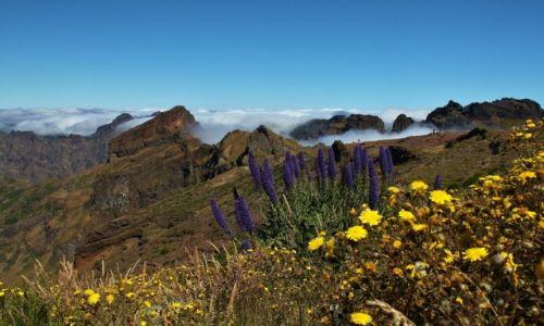 Zdjecie PORTUGALIA / Madera / Pico Do Arieiro / W górach ...