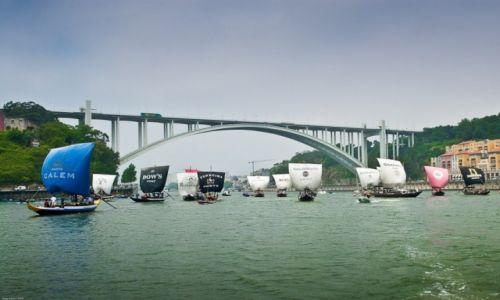 PORTUGALIA / Porto e Norte / Porto / Regata de Barcos Rabelos