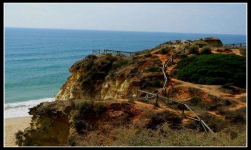 Zdjęcie PORTUGALIA / Algarve / Portimao / Portimao