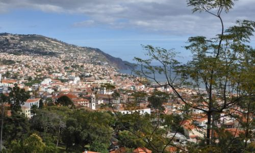Zdjecie PORTUGALIA / Madera / Funchal / Miasto Funchal