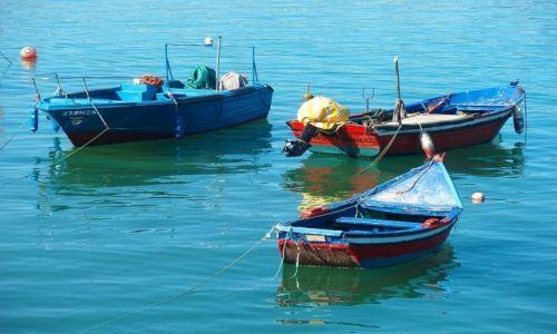 Zdjęcie PORTUGALIA / Nazare / Nazare / boats in port