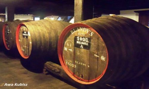 PORTUGALIA / Wyspa Madera / Funchal / Beczki z winem Madera