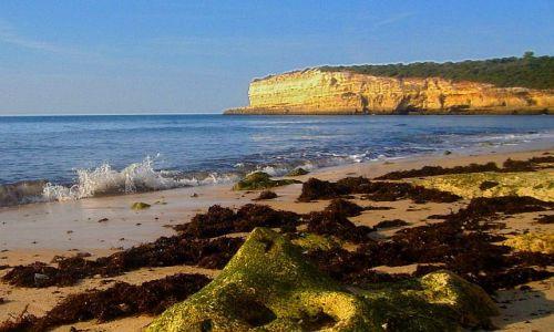 Zdjecie PORTUGALIA / Algarve / Ponta da Piedade / Dzika plaża w Algarve
