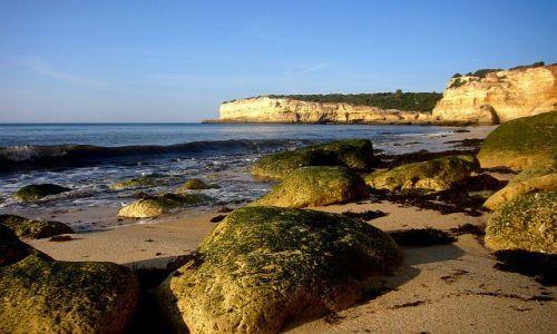 Zdjecie PORTUGALIA / Algarve / Ponta da Piedade / Algarve 4