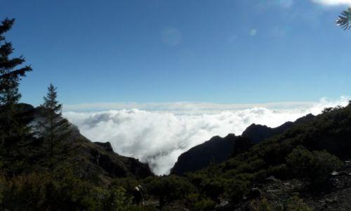 Zdjecie PORTUGALIA / Madera / Pico Ruivo / W drodze na szczyt