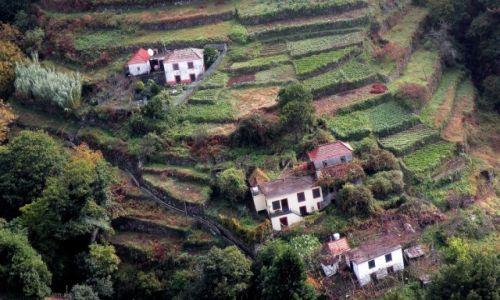 Zdjęcie PORTUGALIA / Madera / zachód wyspy / Przełęcz Encumenada 2