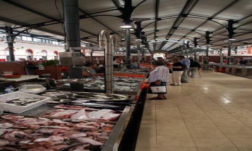 Zdjecie PORTUGALIA / algarve / Loule / ciągle ryby