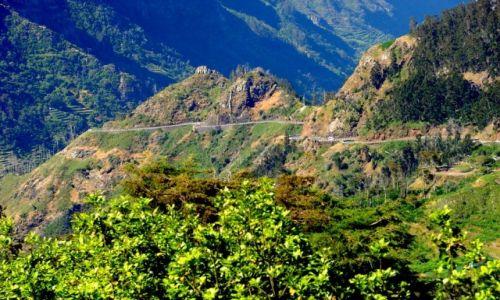 Zdjecie PORTUGALIA / Madera / Madera / Maderskie góry 1