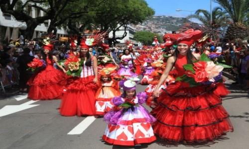 Zdjecie PORTUGALIA / Madeira / Funchal  / Festa da Flor