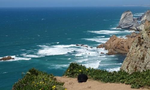 Zdjęcie PORTUGALIA / Park Narodowy Sintra-Cascais / Cabo da Roca / (z)wiało!  ;-)