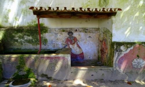 Zdjecie PORTUGALIA / dystrykt Lizbona / Sintra-ogrody przy Pa�acu Narodowym / Pa�acowa praczk