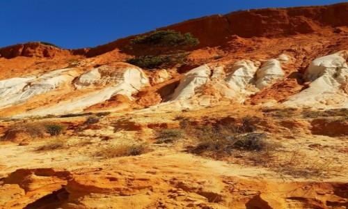 Zdjecie PORTUGALIA / Algarve / Falesia / wakacje...