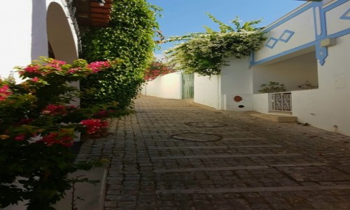Zdjęcie PORTUGALIA / Algarve / Albufeira / spacer...
