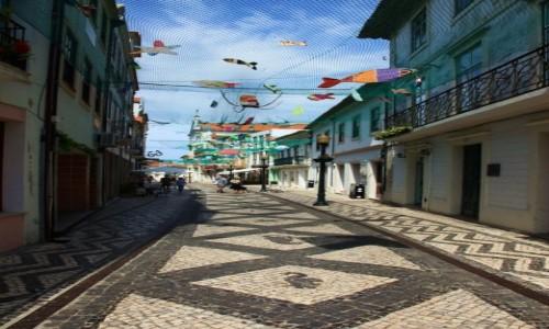 Zdjęcie PORTUGALIA / Aveiro / Rua de Coimbra / W sieci