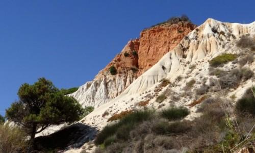 PORTUGALIA / Algarve / Olhos de �gua / Praia da Fal�sia - Klify III