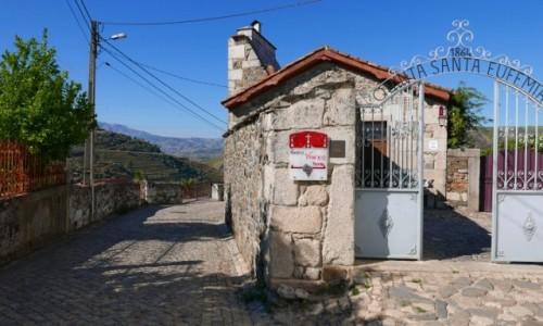 Zdjecie PORTUGALIA / dolina Douro / dolina Douro / rodzinna winiar