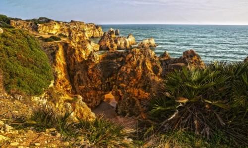 Zdjecie PORTUGALIA / Algarve / Okolice Alvor / Praia dos Tr&#2