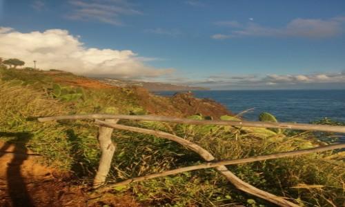 Zdjęcie PORTUGALIA / madera /  okolice funchal / klimatyczne miejsce nad oceanem