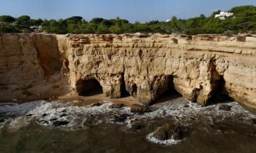 Zdjęcie PORTUGALIA / Algarve / Porches / zachodnie wybrzeże Algarve