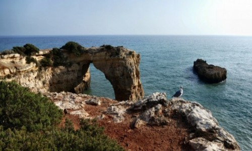 PORTUGALIA / Algarve / Porches / klif  -zachodnie wybrzeże Algarve